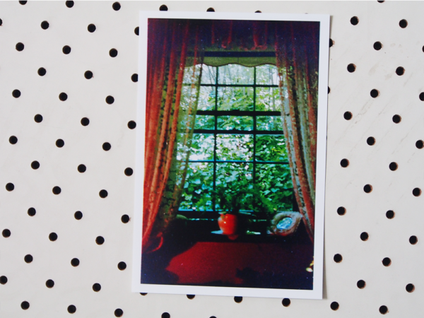 patrick window