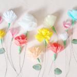 pretty flowers by pip