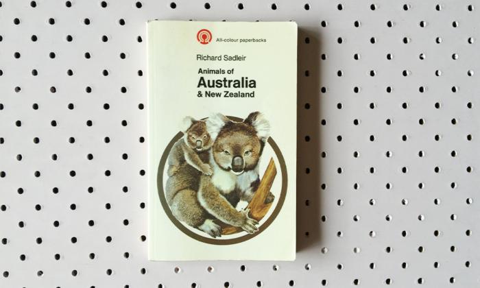 animals of australia and new zealand