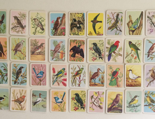 Bird Tea Cards