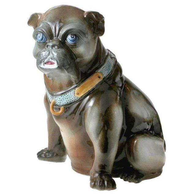 Startled bulldog