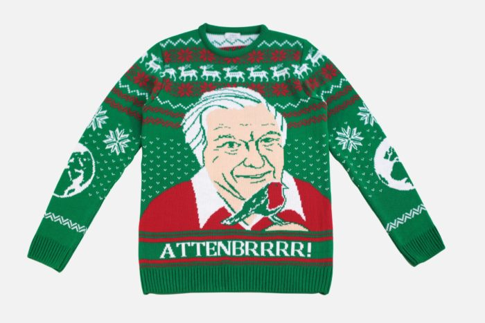 David Attenborough jumper