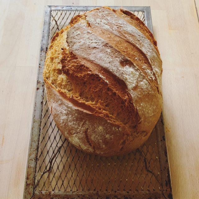 Pip's bread