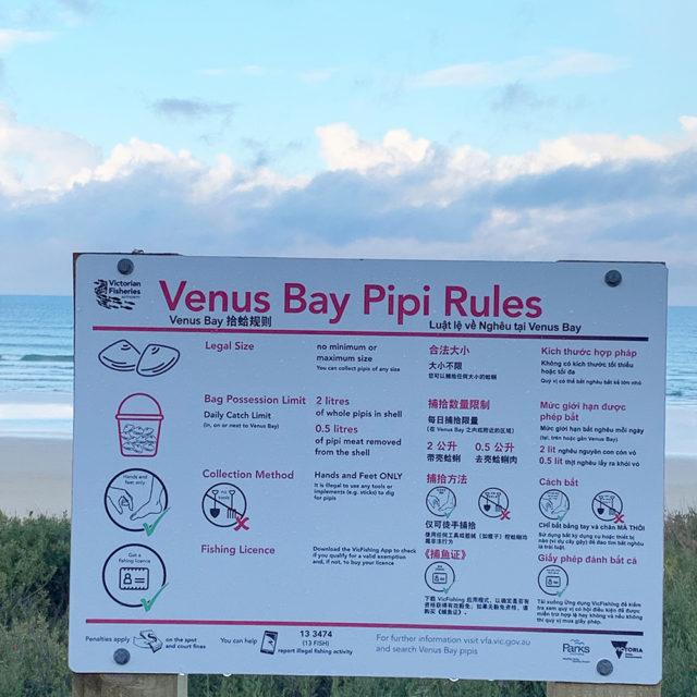 Pip at Venus Bay