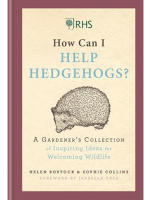 how can I help hedgehogs
