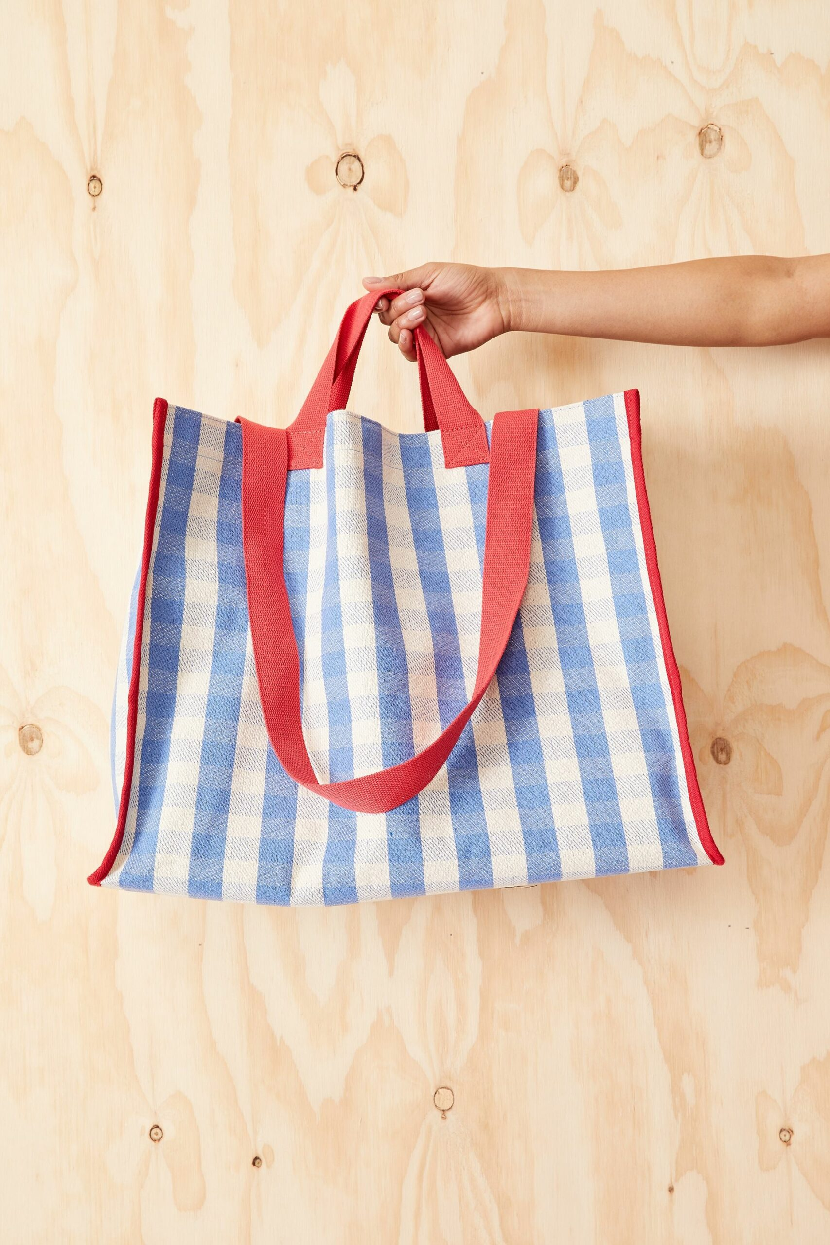 Pale blue gingham tote bag with red trim and red handles.